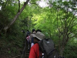 登山写真2